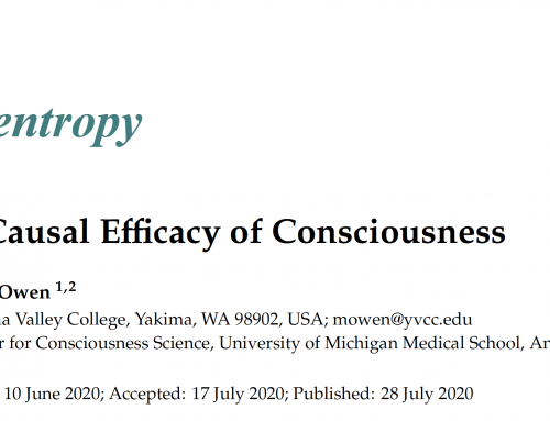 Entropy Article: The Causal Efficacy of Consciousness