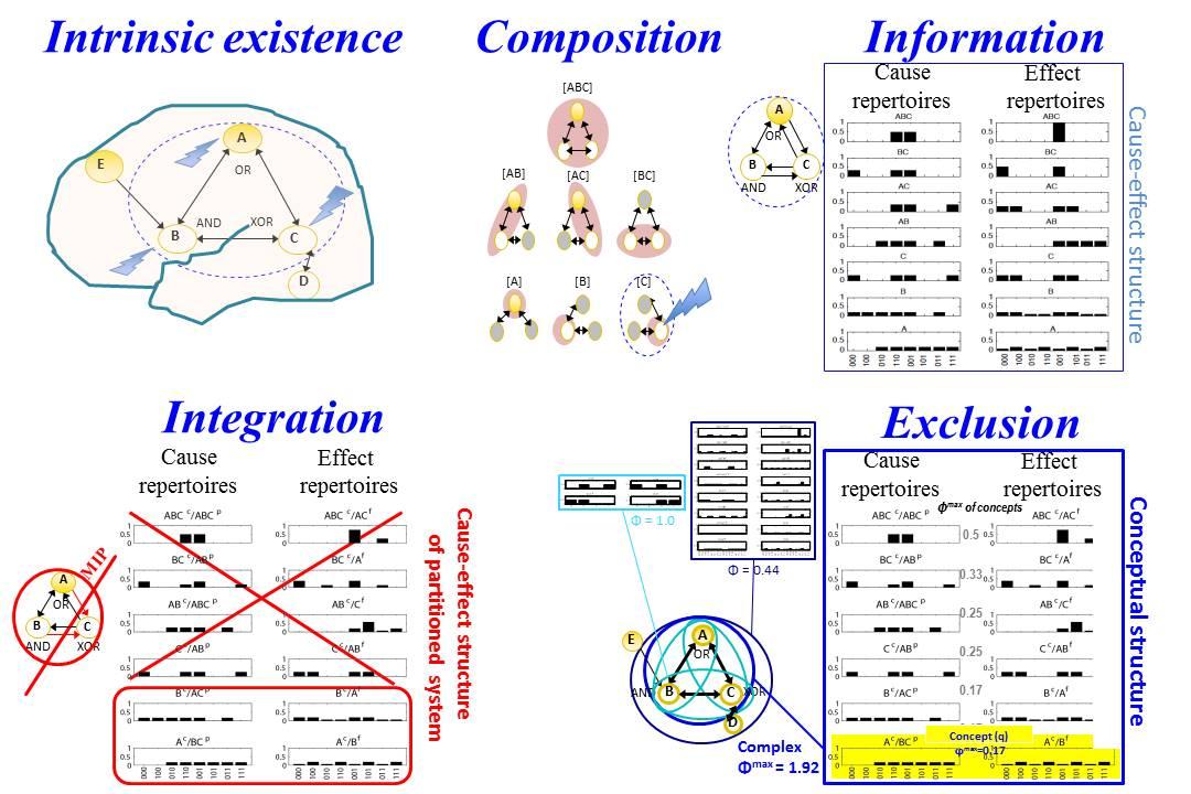 Journal of Consciousness Studies article on IIT & Aristotelianism